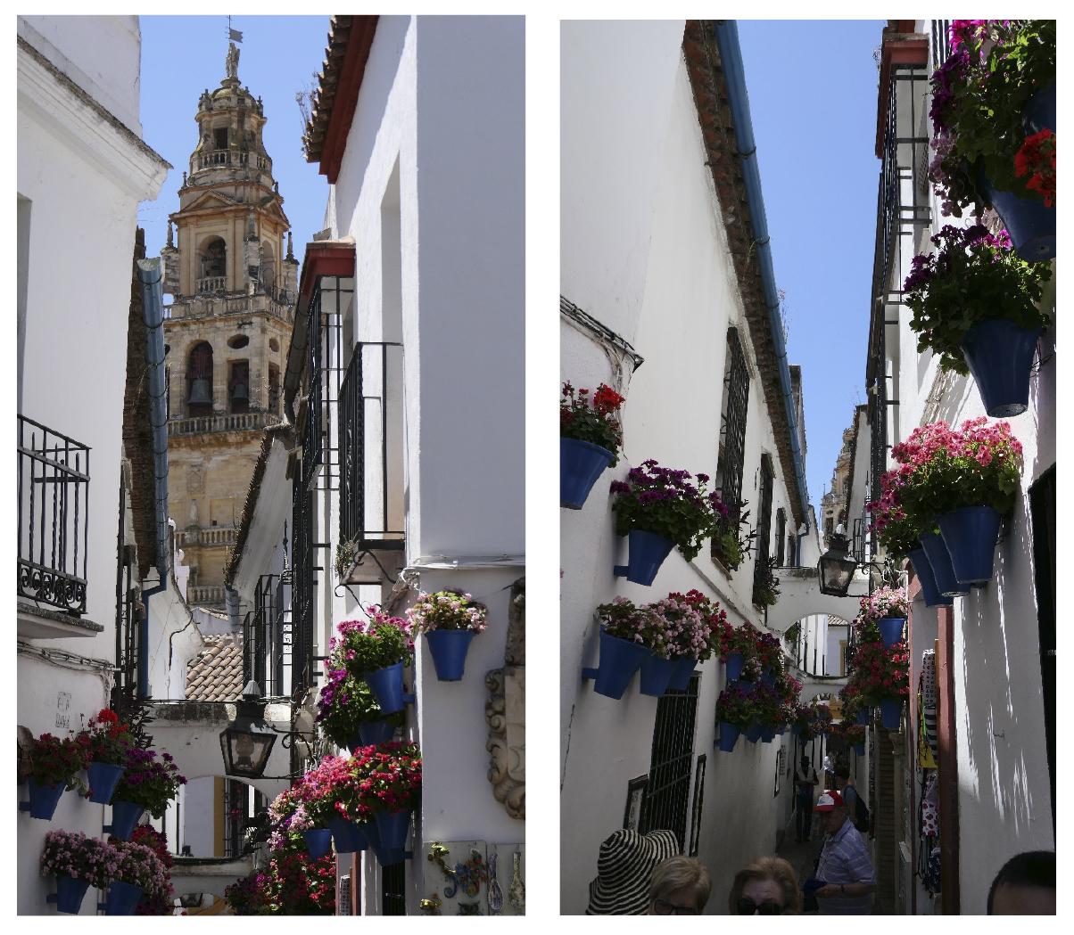 Viaje a Andalucía de los alumnos de 1º de la ESO - Dia 2